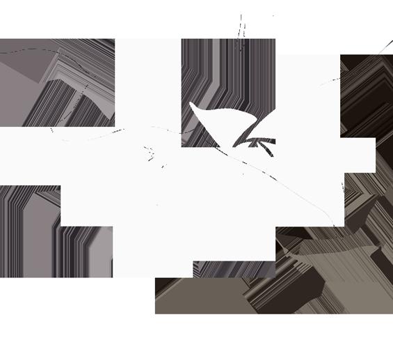 Kukkakauppa Karjalanneito